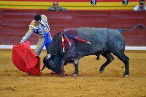 illescas-corrida-totale