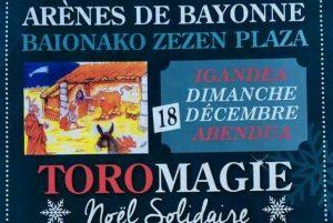 bayonne-toromagie2016