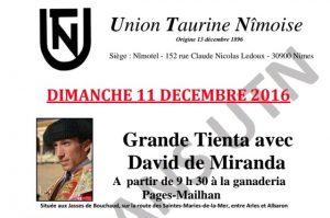 nimes-union-taurine-david-de-miranda