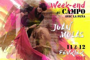 Arles-campo-Juan Molas-Los Galos