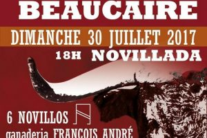 Beaucaire-affiche2017