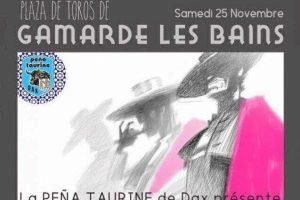 Gamarde festival2017
