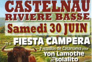 Castelnau-affiche2018