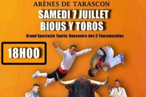 Tarascon-tauromachies2018