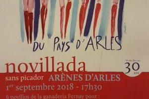 Arles-novillada-pays2018