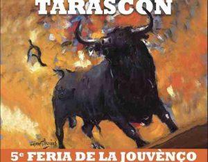 Tarascon-programme2019