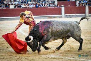 Madrid-Roman-Adolfo