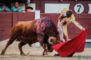 Madrid-juan leal-pedraza