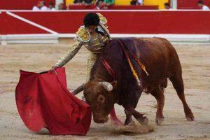 Pamplona-lopez simon