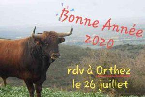 Voeux2020-Orthez