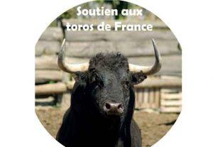 toros-france