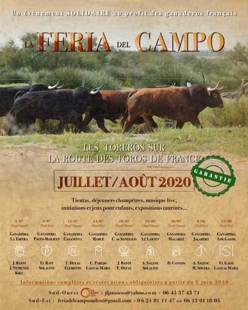 Campo-affiche2020