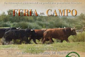 Campo-feria2020