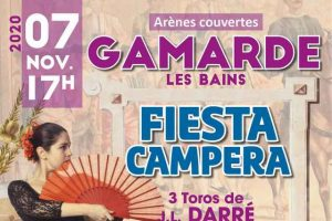 Gamarde-affiche-novembre2020