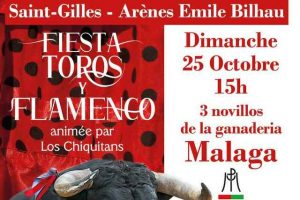 Saint-Gilles-toros-flamenco