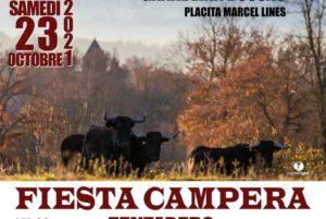 Aire-Fiesta-campera-anniv